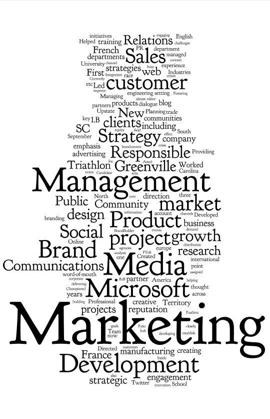 bio the brandbuilder blog Epic Consultant Resume