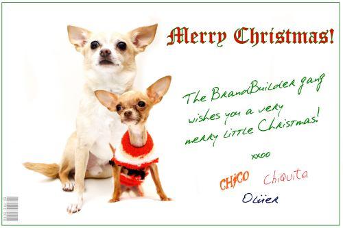Brandbuilder Chihuahua Christmas 2008