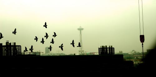 Seattle, by Olivier Blanchard - 2008