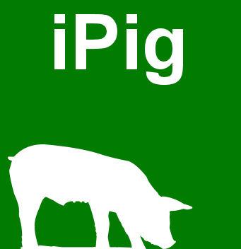iPig icon